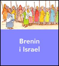 Brenin i Israel
