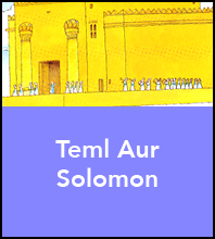 Teml Aur Solomon